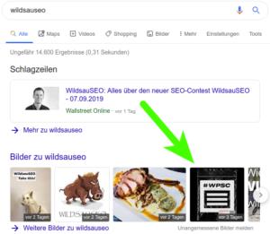 wildsauseo Bildoptimierung
